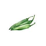 Baklouti Chili Peper Olive OIl