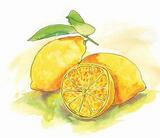Sicilian Lemon Balsamic (white)