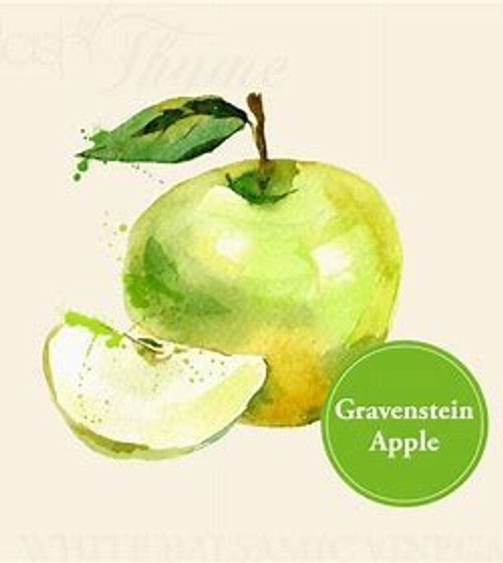Gravenstein Apple White Balsamic All Natural   The Gravenstein Apple is an incredibly hard to find varietal due to the difficulty farmers have cultivating. It has a short season and is grown in pockets up the coast of Northern California and prized for its amazing ambrosia perfume, and crisp, sweet-tart cream-colored flesh. Our Gravenstein Apple White Balsamic marries the complexity of the Gravenstein's larger than life flavor with our well balanced Ultra-Premium White Balsamic Vinegar from Italy for a delectable culinary symphony.