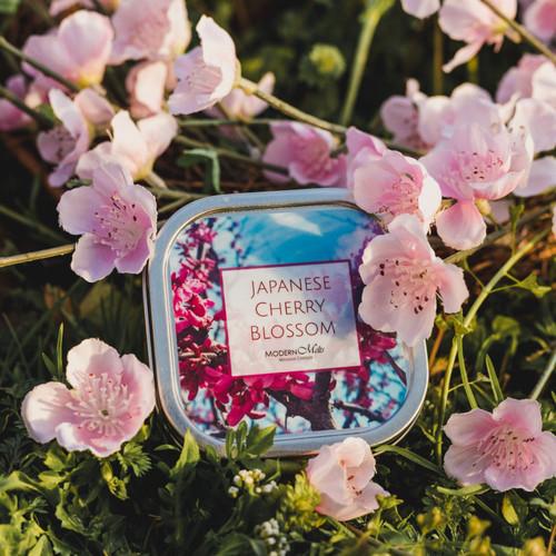 Japanese Cherry Blossom Massage Candle (8oz)