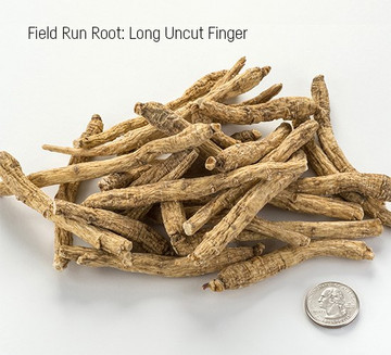 Wisconsin Long Uncut Finger - (GK03)