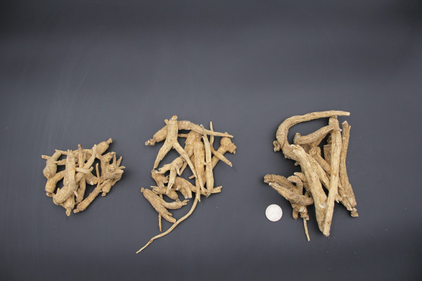 4 year-old Blemished Roots - 10# Bag