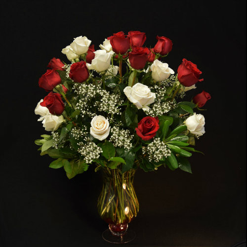 PERFECT THREE DOZEN RED & WHITE IN A BEAUTIFUL DESIGNER VASE