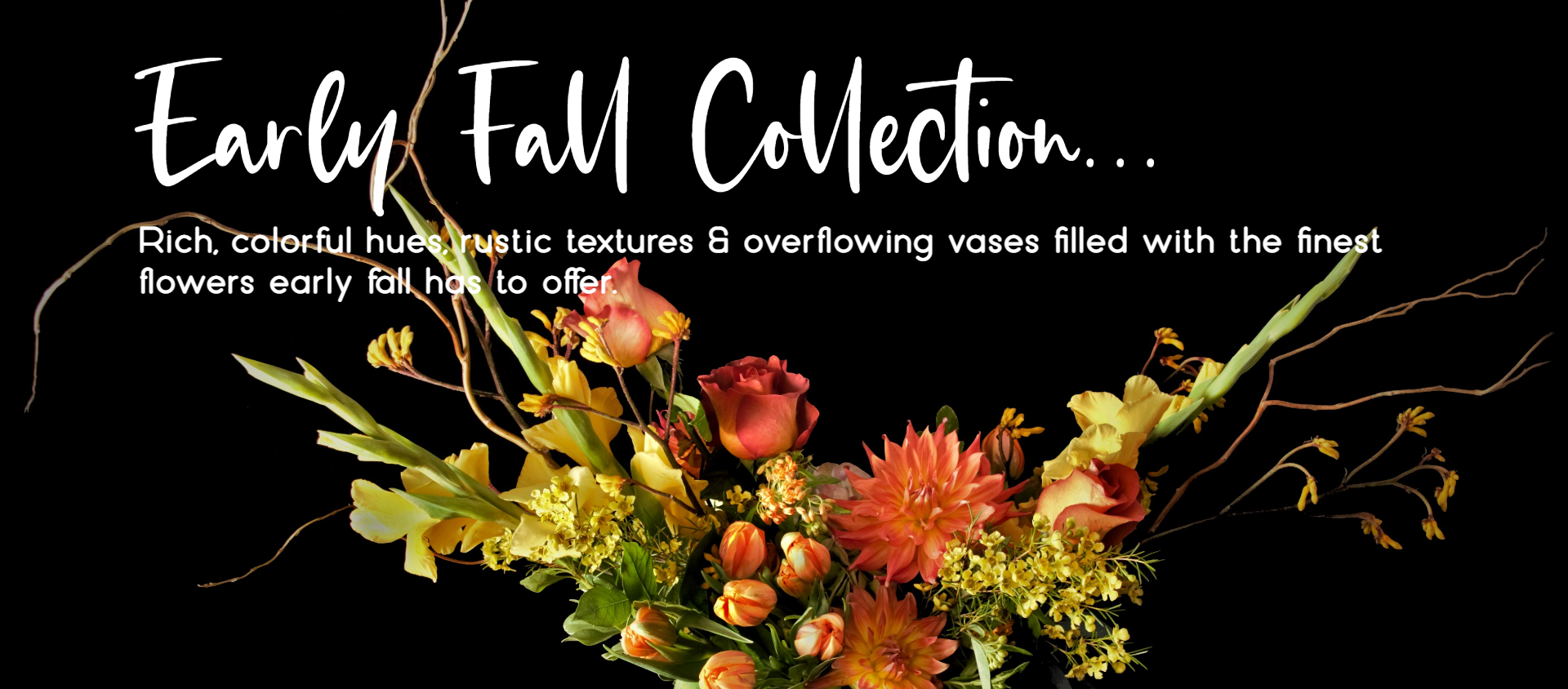 early-fall-header-1920x844.png