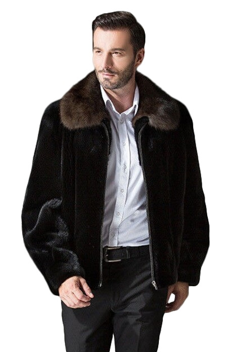 Mens Mink Fur Coat Black with Mahogany mink fur  Collar on male model matching with white shirt dark gray pants and  leather shoes close view
