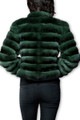 back view of green chinchilla coat with low cut collar , waist length