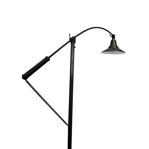 "12"" Calla LED High Power Floor Lamp- Black Finish"