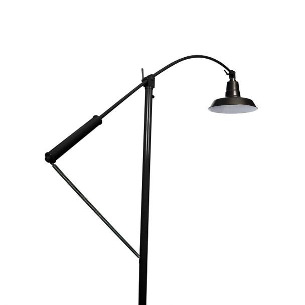 "Cocoweb 12"" Oldage LED Floor Lamp- Black Finish"