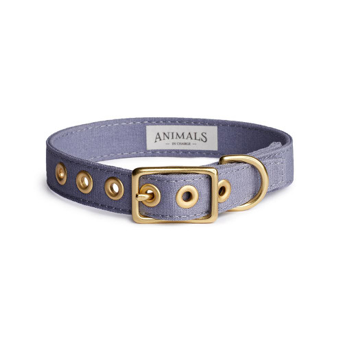 ANIMALS IN CHARGE - Storm + Brass All Weather Collar (Size M)