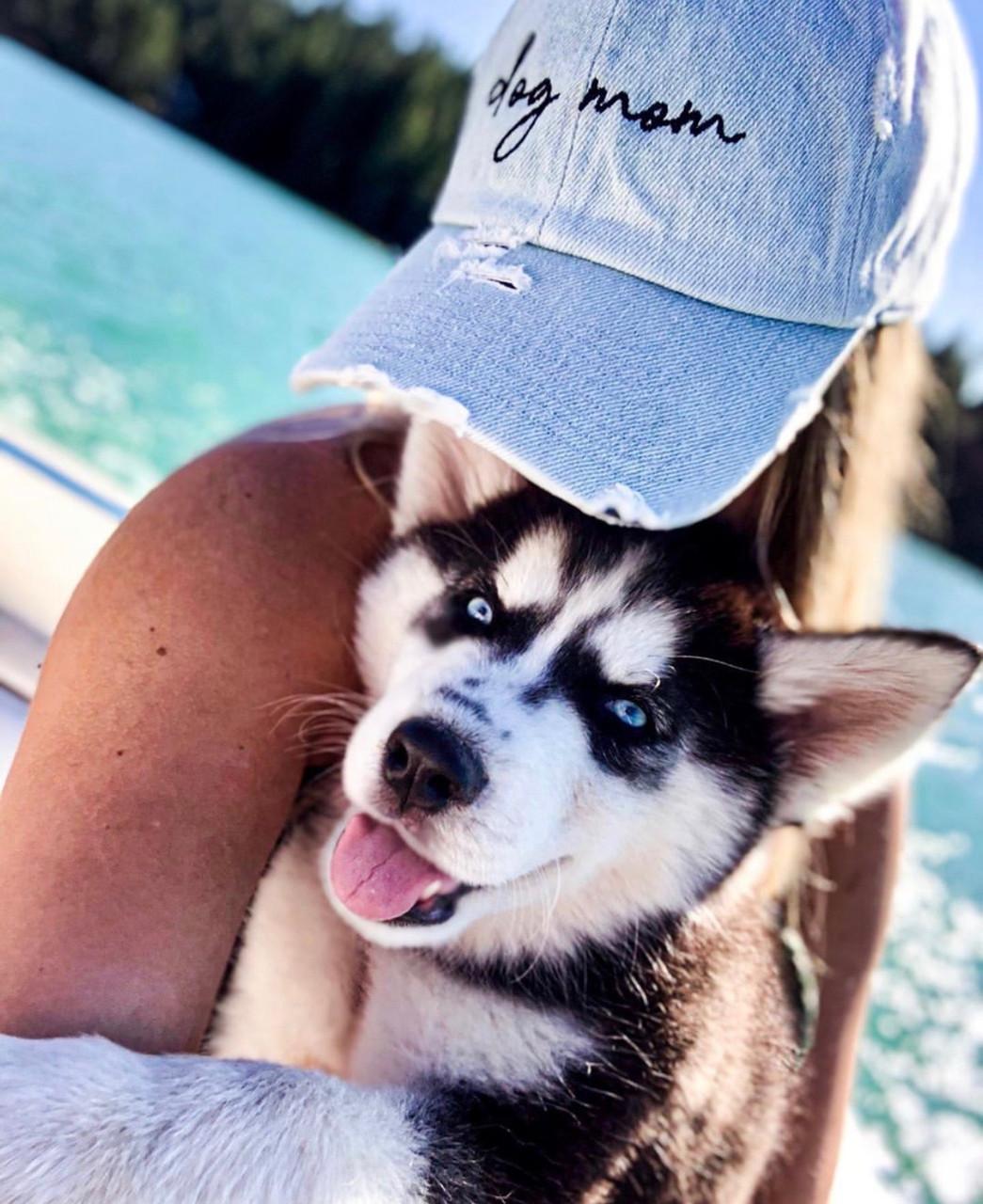 3189efe6a30c53 Dog Mom-Light Denim Distressed Baseball Hat - CollarDoos