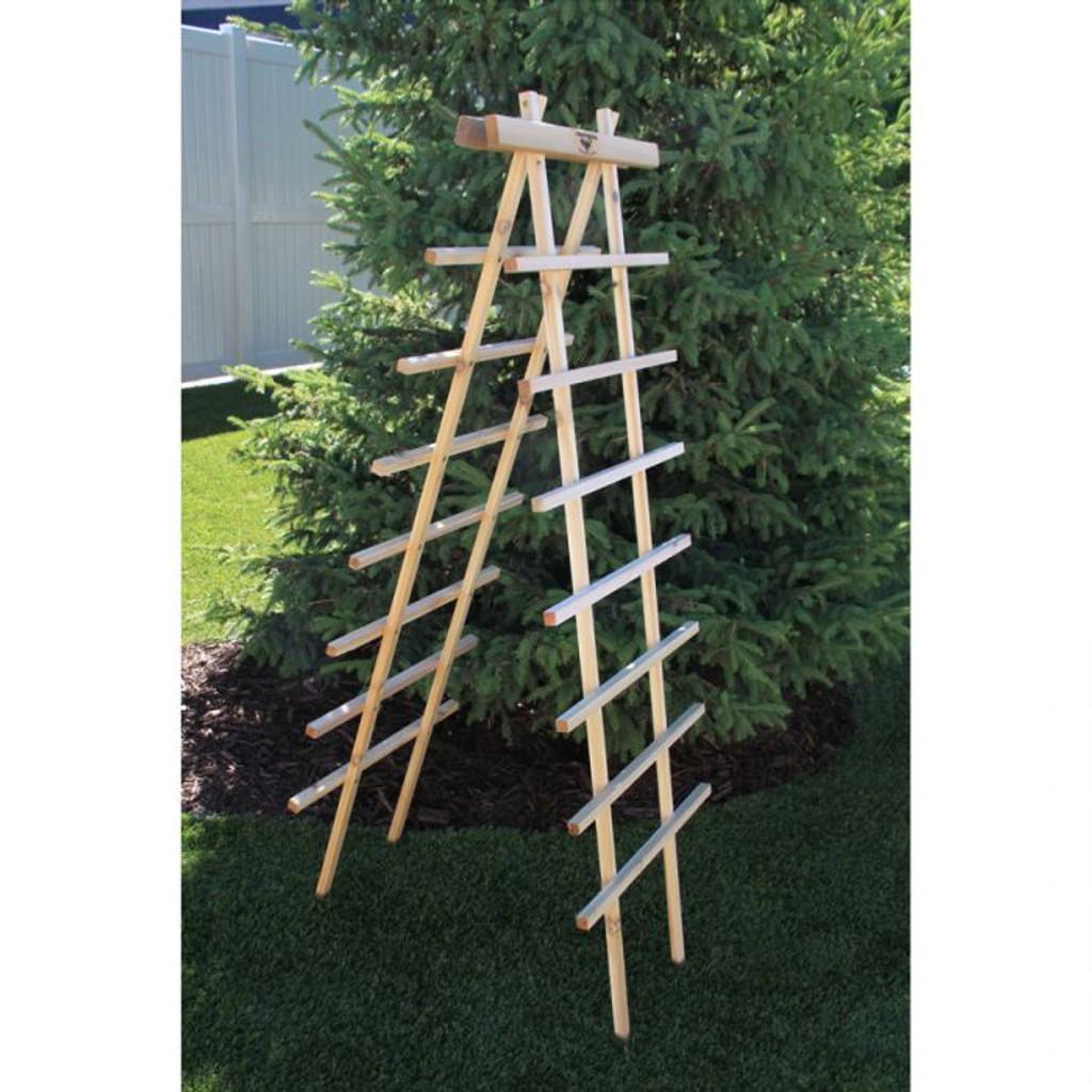 "Ladder Trellis Kit 24x72""H"