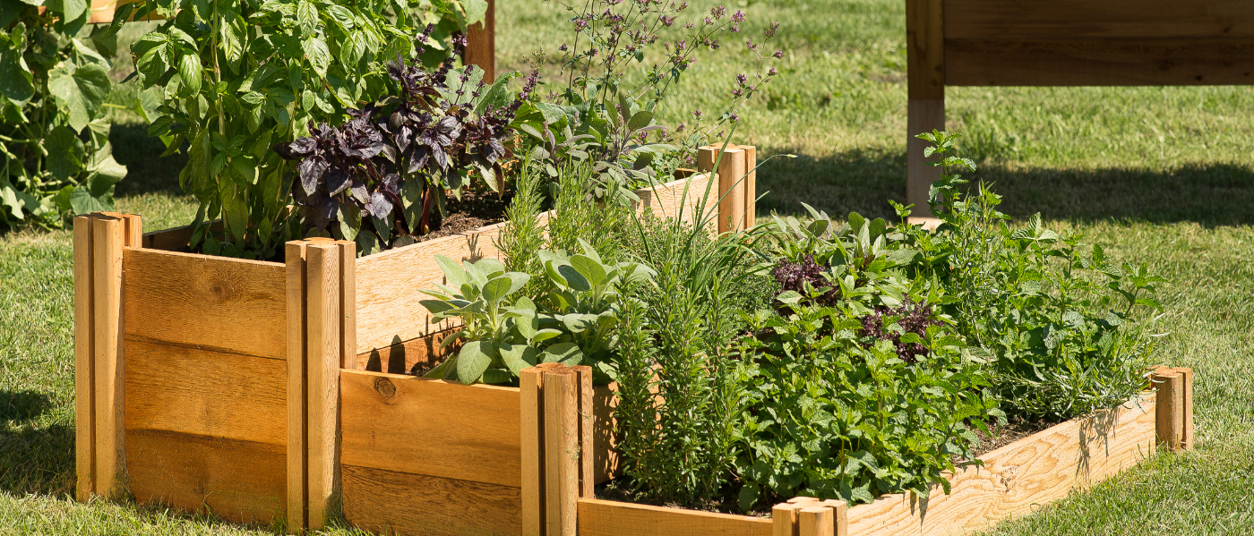 Gronomics - Raised & Elevated Garden Beds on