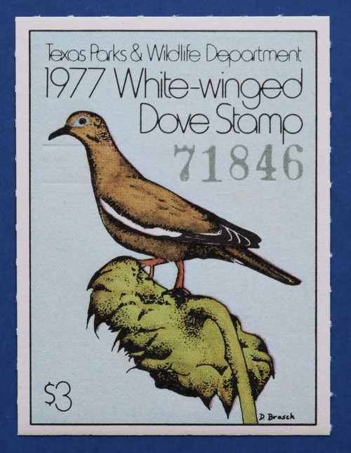 1977 Texas White-winged Dove Stamp (TXD07)