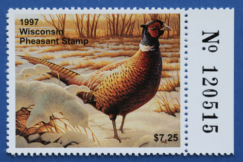 1997 Wisconsin Pheasant Stamp with right serial # tab (WIP06R)
