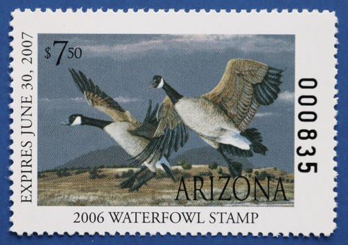 2006 Arizona State Duck Stamp (AZ20)