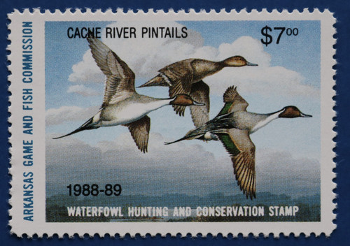 1988 Arkansas State Duck Stamp - hunter type (AR08h)