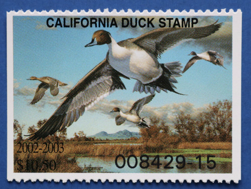 2002 California State Duck Stamp (CA32)