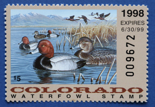 1998 Colorado State Duck Stamp (CO09)