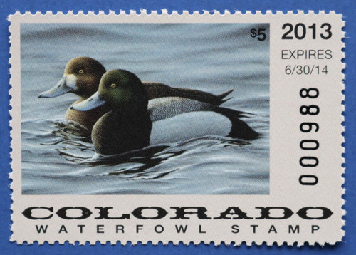 2013 Colorado State Duck Stamp (CO24)