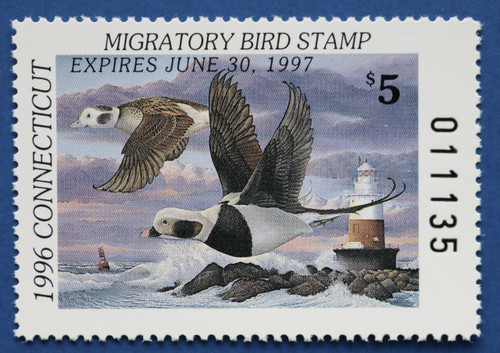 1996 Connecticut State Duck Stamp (CT04)