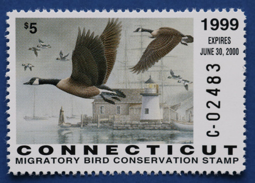 1999 Connecticut State Duck Stamp (CT07)