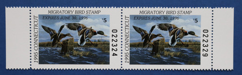 1995 Connecticut State Duck Stamp - horizontal hunter pair (CT03hp)