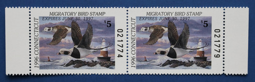 1996 Connecticut State Duck Stamp - horizontal hunter pair (CT04hp)