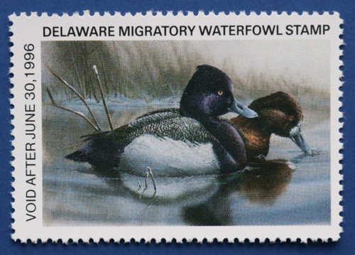 1995 Delaware State Duck Stamp - hunter type (DE16h)