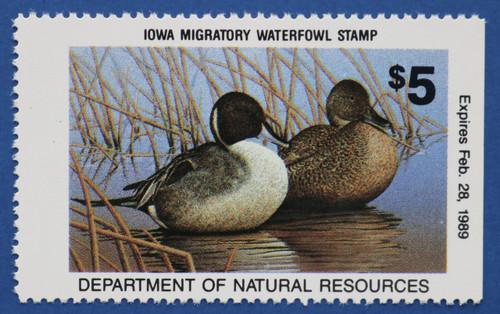 Iowa State Duck Stamp (IA17)