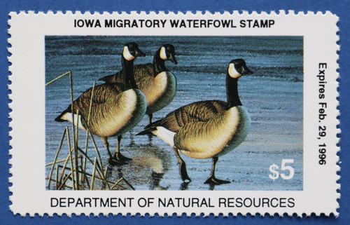 1995 Iowa State Duck Stamp (IA24)