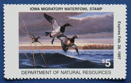 1996 Iowa State Duck Stamp (IA25)