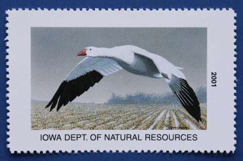 2001 Iowa State Duck Stamp (IA30)