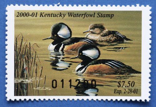 2000 Kentucky State Duck Stamp (KY16)