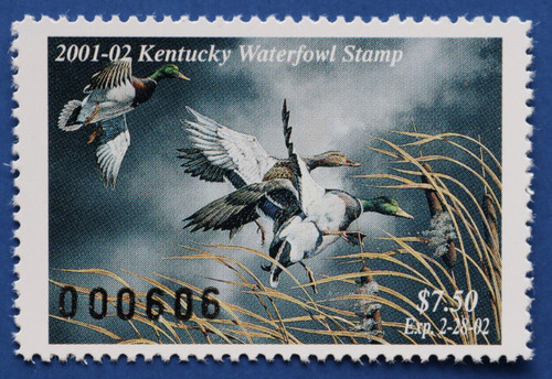 2001 Kentucky State Duck Stamp (KY17)
