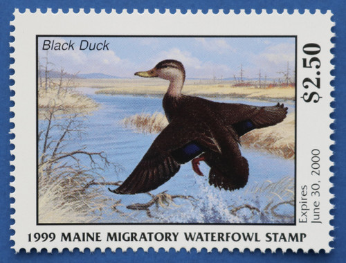 1999 Maine State Duck Stamp (ME16)