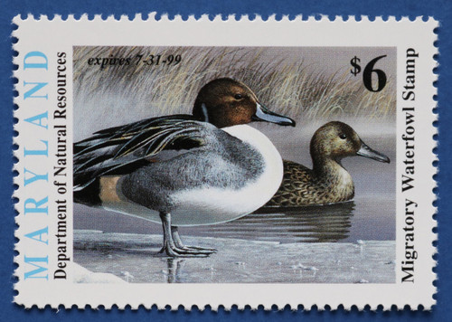 1998 Maryland Migratory Waterfowl Stamp (MD25)