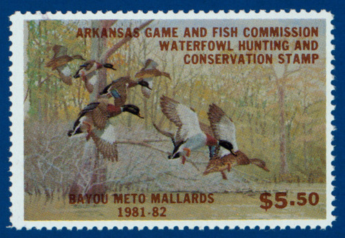 U.S. (AR01) 1981 Arkansas Waterfowl Hunting & Conservation Stamp