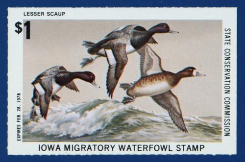 1977 Iowa Migratory Waterfowl Stamp (IA06)