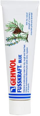 Gehwol Fusskraft Blue - for Dry Rough Feet