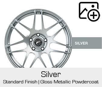 Forgestar Standard Finish Silver