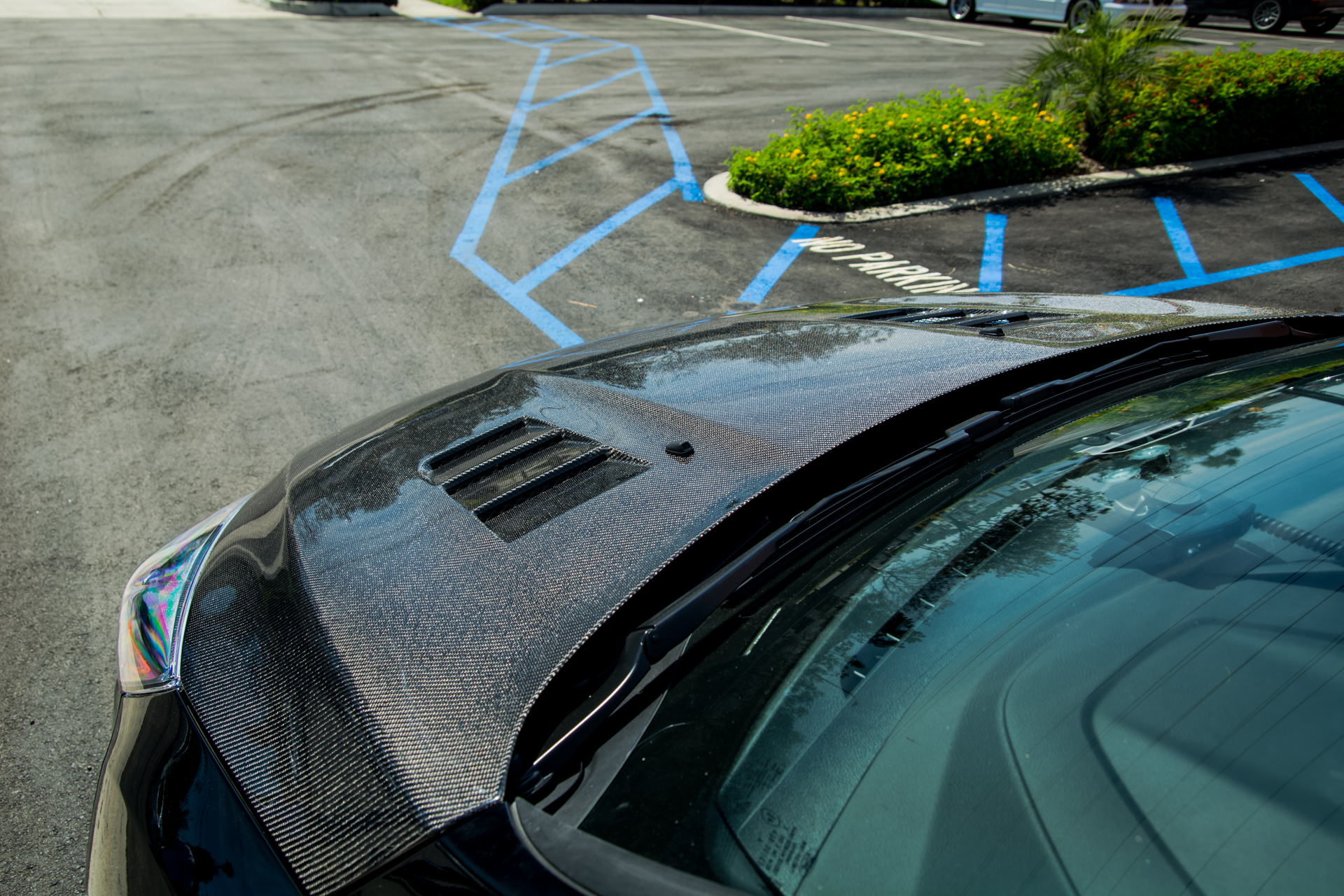 Seibon Carbon Fiber TS-Style Hood for Ford Focus (5)