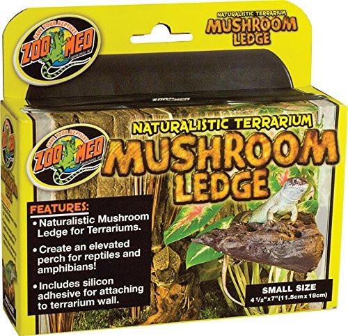 Mushroom Ledge Small