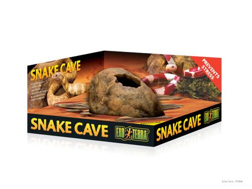 Snake Cave Medium