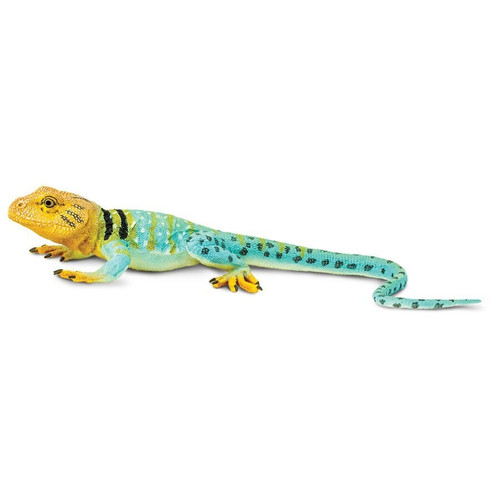 Collared Lizard Toy