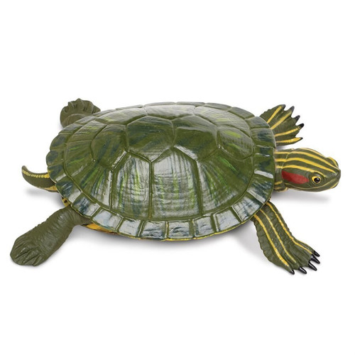 Red-Eared Slider Toy