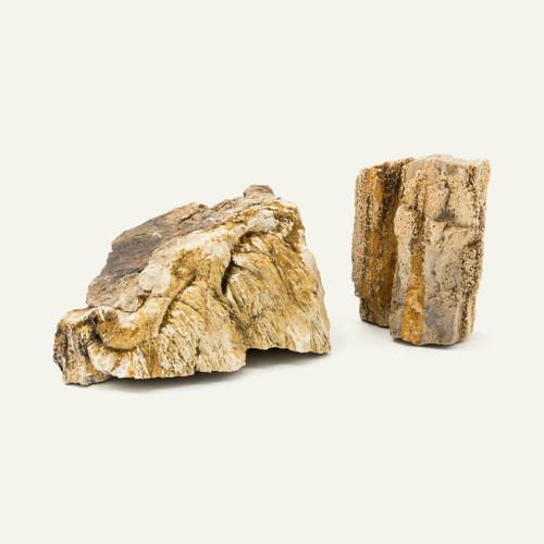 Petrified Wood 1 lb