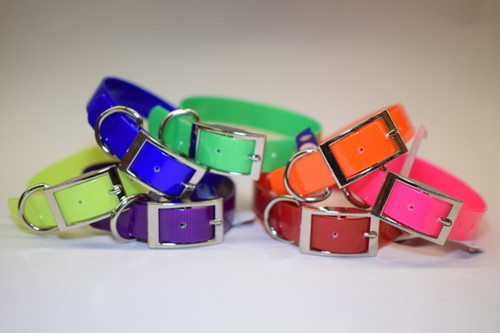 """1"""" D Ring Only Sunglo Collar"""