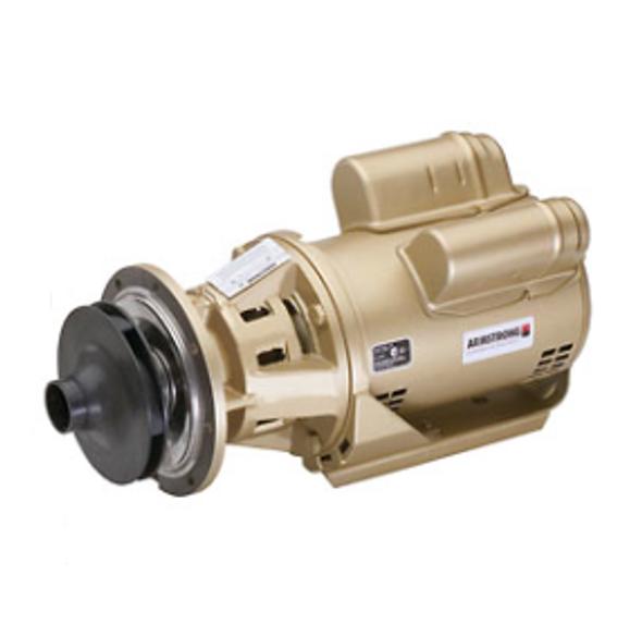 110108MF-677 Armstrong Raypak 2 Boiler Header Pump