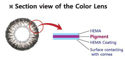 section-view-of-colour-lens.jpg