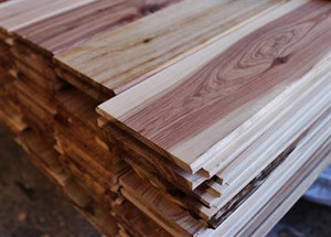 Cypress Pine Tongue & Groove